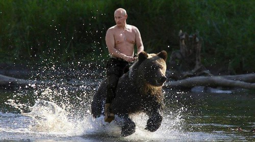 Vladimir Rides To The Rescue