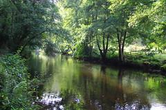 Landscape - Devon