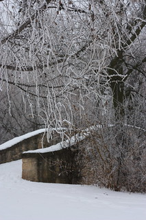 Frost and bridge