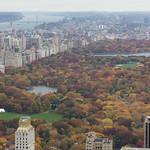Fall Central Park