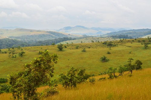 Lope National Park, Gabon