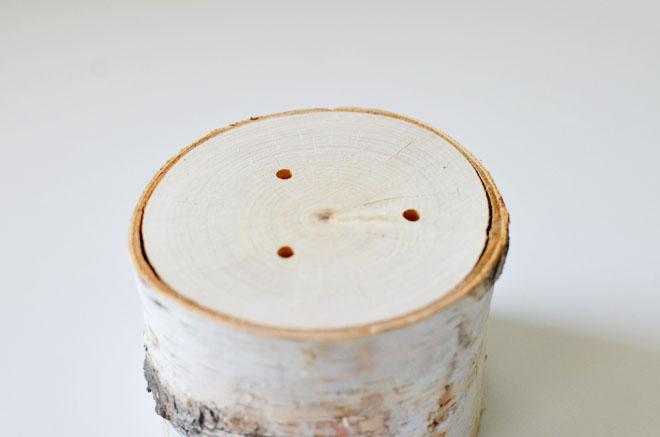 bark photo holder