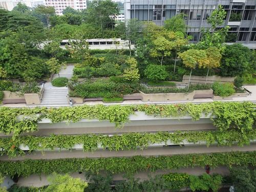 綠屋頂,圖:梧桐基金會