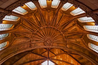 Smithsionian Ceiling