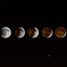 Lunar Eclipse - April 2014 by Old Boone