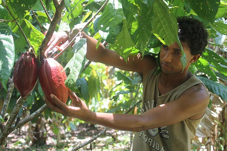 Esse rapaz é Técnico em Agrocologia e nosso gui no assentamento - Salvio Oliveira!!!.jpg