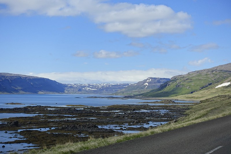 north to puffins 56