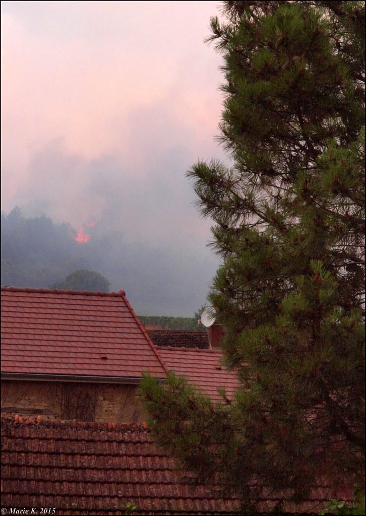 Incendie de forêt  19924761331_bc4b4748dc_b
