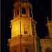 Catedral de Santa Cruz de Cádiz,Andalucia,España