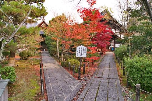 【写真】2012 紅葉 : 清凉寺/2020-09-21/IMGP7817