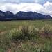 City of Boulder, Colorado - Open Space & Mountain Parks