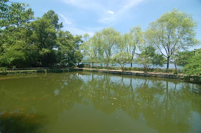 杭州西湖花港觀魚