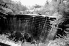 Rouken Glen Waterfall 03