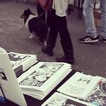 Sheltie doggie at #sarjakuvafestivaalit :3
