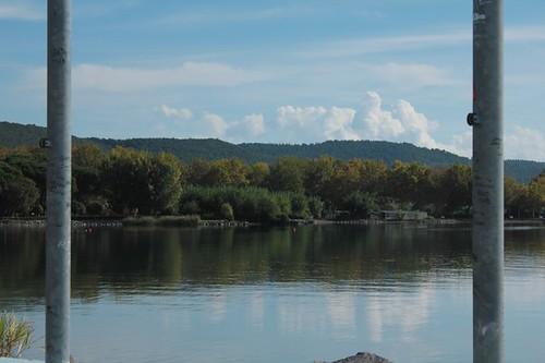 la vegetazione dall'altro lato del lago
