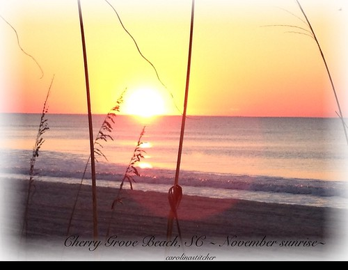 Cherry Grove Beach, SC~Nov 2013
