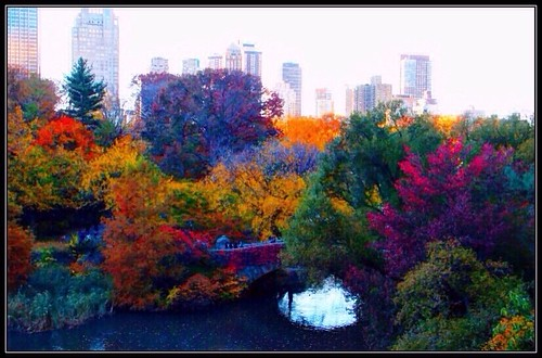 Autumn at Central Park, New York