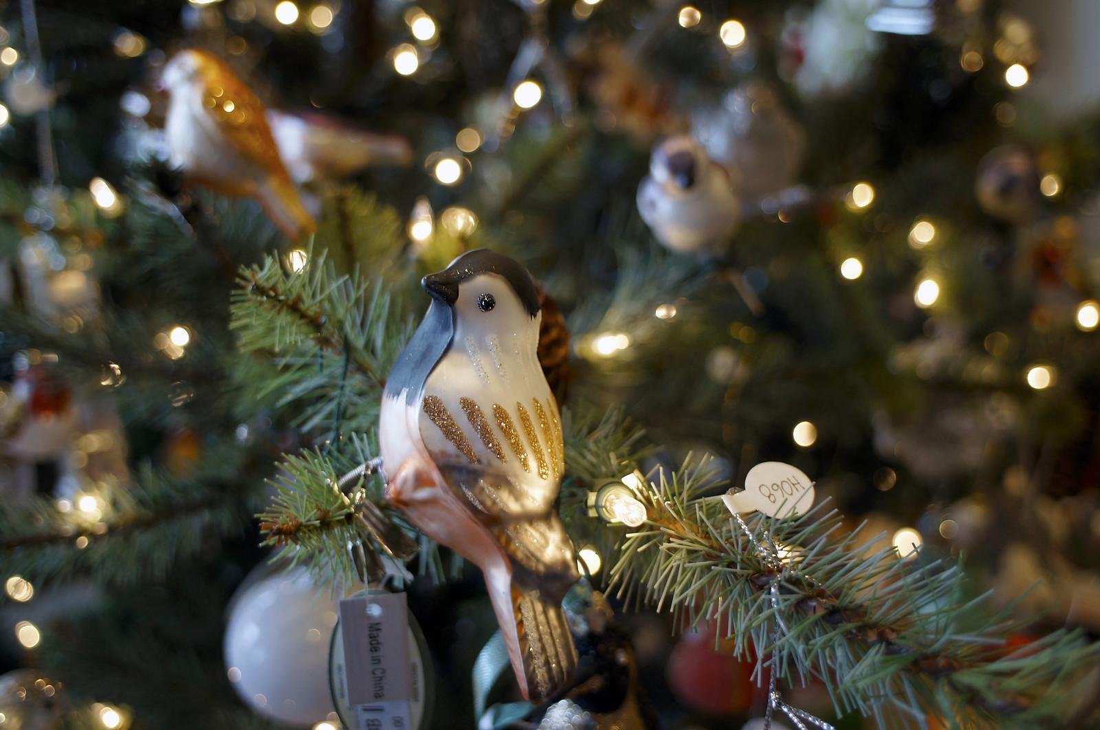 聖誕節快到了!