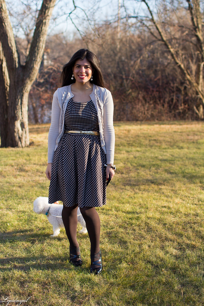 gingham dress cardigan thanksgiving.jpg