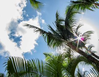 sunshine caribe ... punta cana