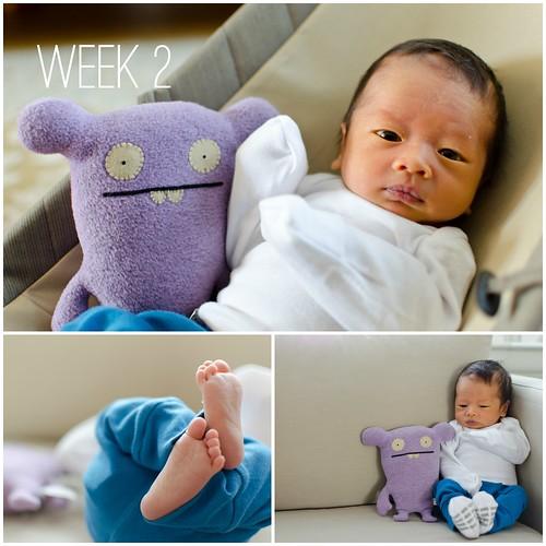 Oliver - Week 2