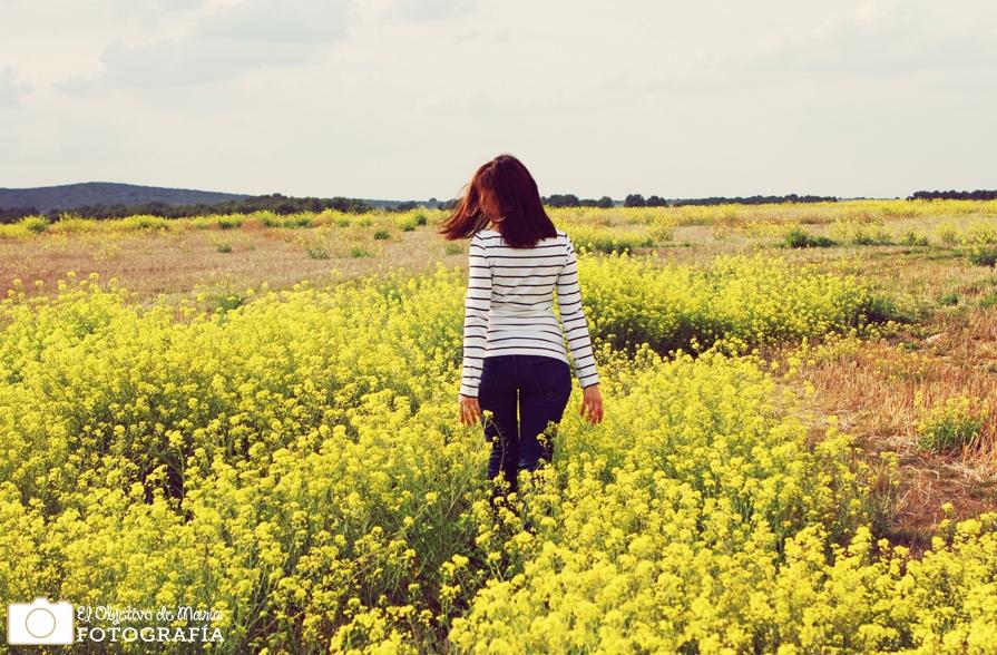 entre flores amarillas