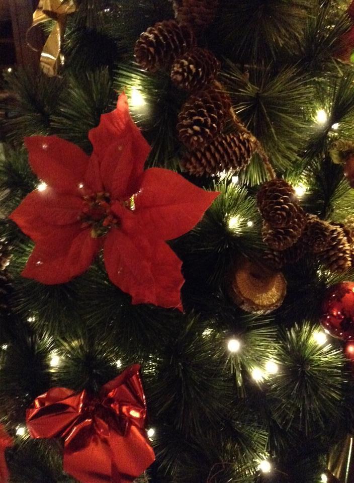 Un séjour pour la Noël à Disneyland et au Royaume d'Arendelle.... - Page 2 13607876073_b6fd85bbb5_b