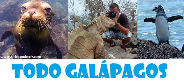 Artículos sobre Islas Galápagos