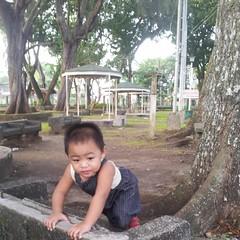 #babyJJ #morning exploration at People's Park