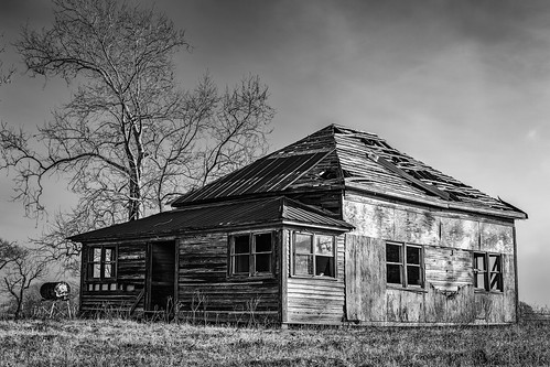 abandoned bw blackwhite blackandwhite decay decayed derelict deserted dilapidated farmhouse home house monochrome old tree chappellhill texas unitedstates us