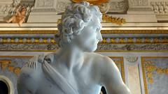 Bernini, David
