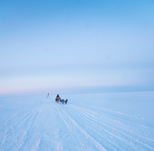 Musher on the sea ice outside Koyuk