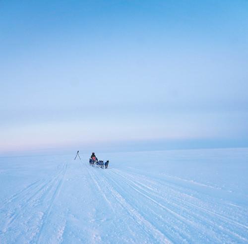 Musher on the sea ice outside Koyuk