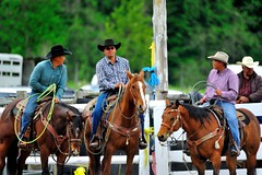 Lillooet Lake Rodeo 2013
