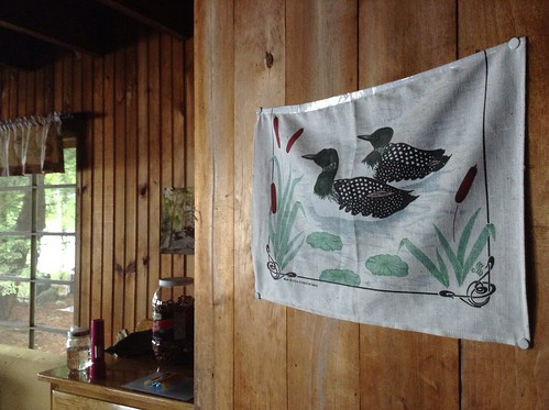 Loons in Our Living Room, Shingle Blessedness
