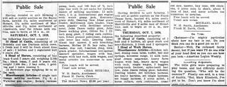 Public Sales
