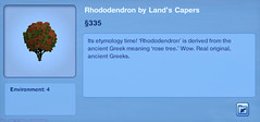 Rhododenron by Land's Capers