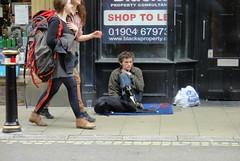 I Fed The Dog - York City Centre - June 2013 - Candid Beggar