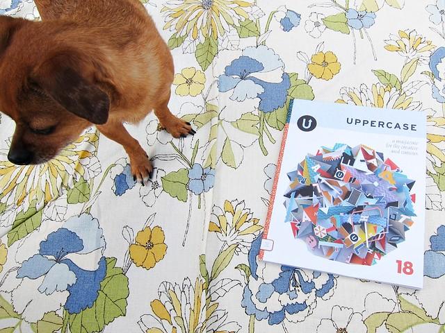 uppercase 18 + Grace