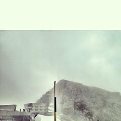 foggy beauty. pilatus. details. — #picoftheday...