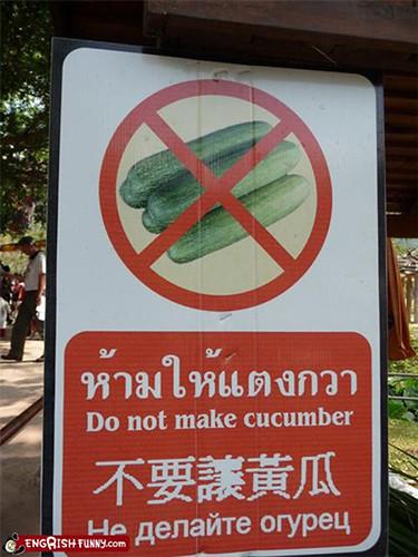 do not make cucumber