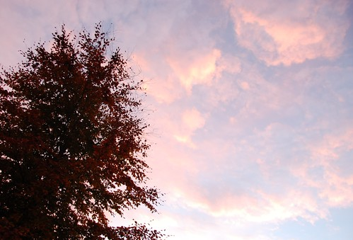sunset 13-12-13 NP