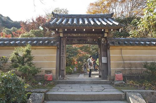 【写真】2013 紅葉 : 浄瑠璃寺/2019-08-22/IMGP3534