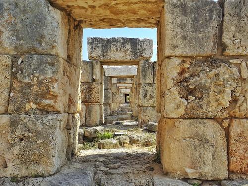 Al Bass Archeological Site (Tyre, Lebanon. Gustavo Thomas © 2013)
