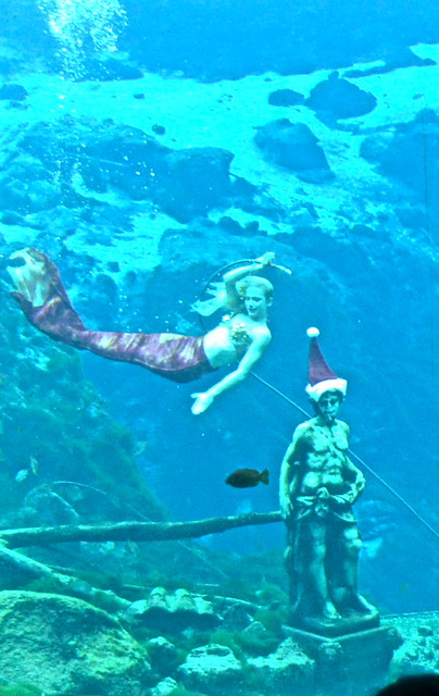 weeki wachee mermaid show - little mermaid