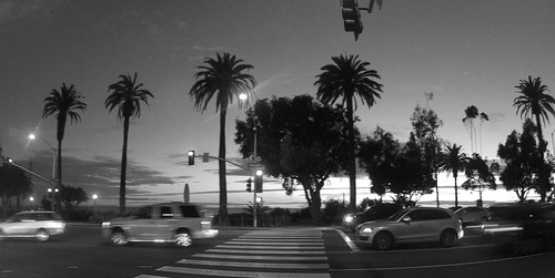 Ocean Avenue