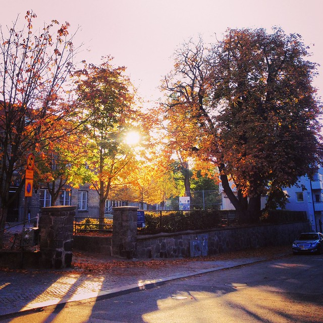 autumn, helsingborg