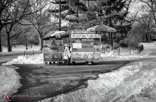 Hot Dog Vendor - Winter Central Park 2013