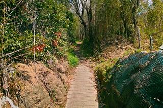 岩滝山 #3