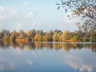 Herfst bij Bronsbergen